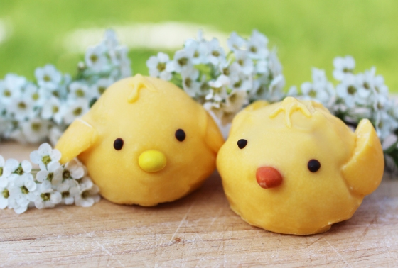 how-to-make-easter-chicks-8